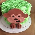 Monkey Rosette Cake
