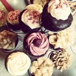 Cupcake Variety