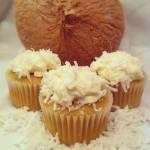 Gluten-Free Coconut